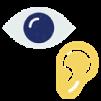 Domain 10: Vision, Vestibular, and Oculomotor Function